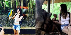 Foto Soyu Sistar Pamer Perut Seksi di Taman Safari Bali