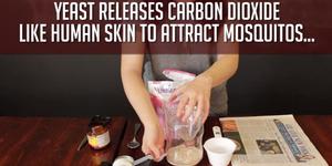Video Cara Membuat Perangkap Nyamuk Dari Gula Merah