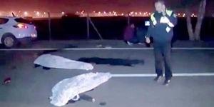 Selfie Berbaring di Jalan, 2 Remaja Tewas Terlindas Truk