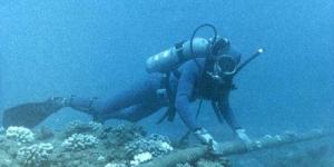 Kabel Bawah Laut Sering Dicuri jadi Penyebab Gangguan Layanan Internet