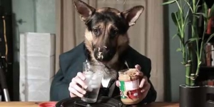 Odin, Anjing Yang Bisa Makan Seperti Manusia